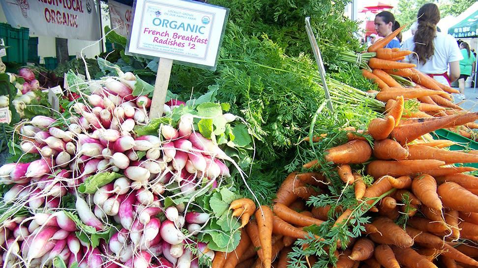 Farmers market, Loewen Gardens, Organic market in Singapore, Christmas Fairs in Singapore, Christmas Markets in Singapore